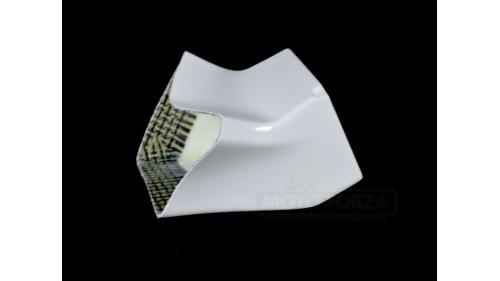 Réducteur d'entrée d'air origine fibre de verre R1 2020
