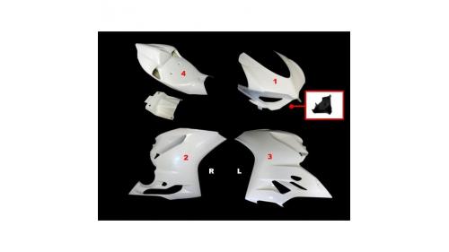Carénage poly complet 4 parties fibre de verre MOTOFORZA 899, 1199