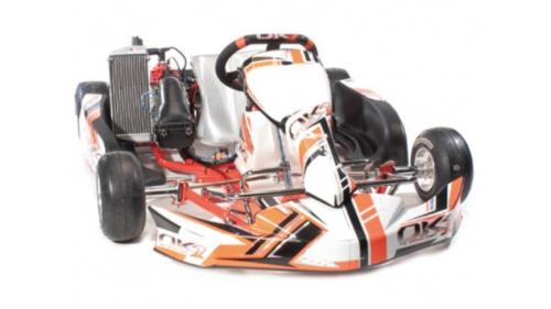 13 ans - Kart OK1 Rotax Nationale FFSA (21 cv)