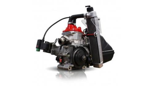 Moteur Rotax 125 MICRO MAX