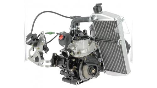 Moteur Rotax 125 MAX EVO (Challenge Rotax)