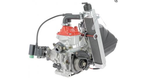 Moteur Rotax MICROMAX FFSA